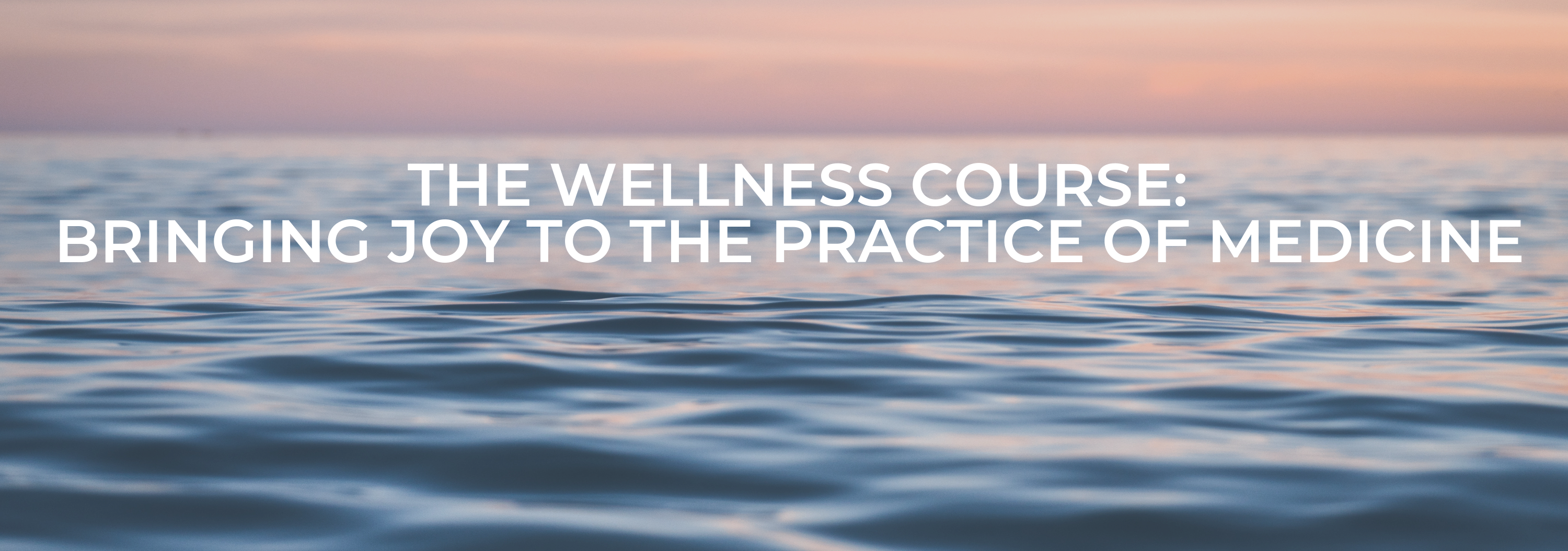 The Wellness Course: Bringing Joy to the Practice of