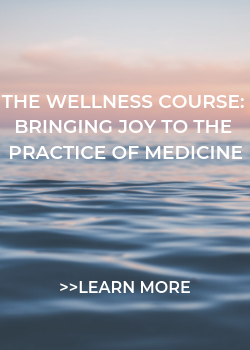 The Wellness Course: Bringing Joy to the Practice of Medicine Banner